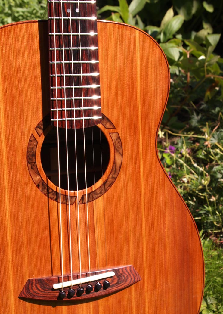 Cocobolo Guitar Wood Cocobolo is The Only Wood